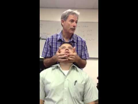 Dr. Fehl Hand and TMJ adjusting practical 2