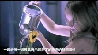 Days - shela (中文字幕)