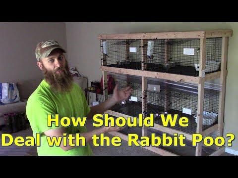 Our Rabbit Breeding Set Up...So Far by @GettinJunkDone