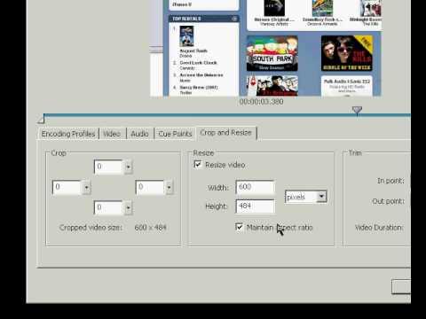 FLV Files/Player [Flash CS3]