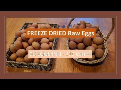 Freeze Dried Raw Eggs