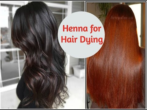 DIY Henna Packs For Getting Different Hair Colours & Deep Conditioning | Sushmita's Diaries
