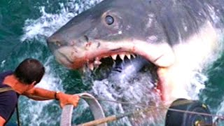 JAWS \