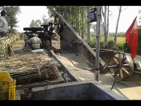 Making of molasses(treacle)
