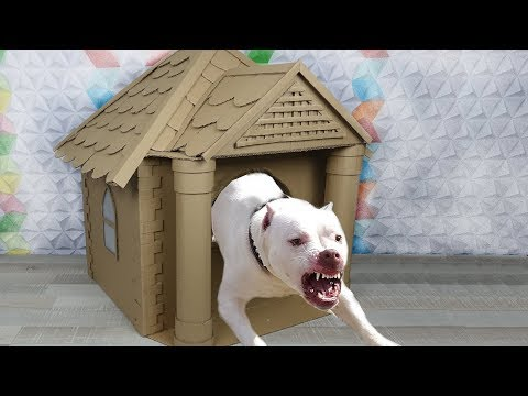 How to Make Amazing Dog House from Cardboard