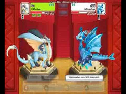 Dragon city [I finally get the Halloween dragon] Pure, Archangel and Aztec Emperor Dragons Fight