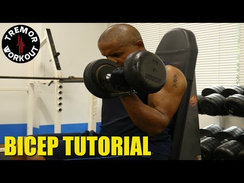 How To Work Out Your Biceps