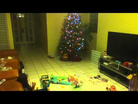How to get rid of your Christmas tree in 5 seconds