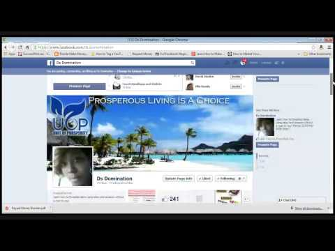 Ds Domination How to make someone a admin of your facebook Fan page