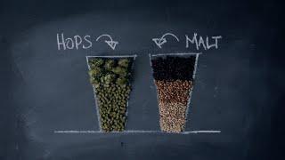 Download Craft Beer 101 - Crafting Better Beer Drinkers Video