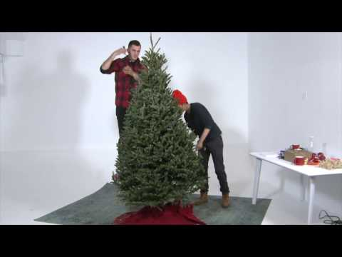 How to Remove Your Christmas Tree (Safe, Quick, Clean)