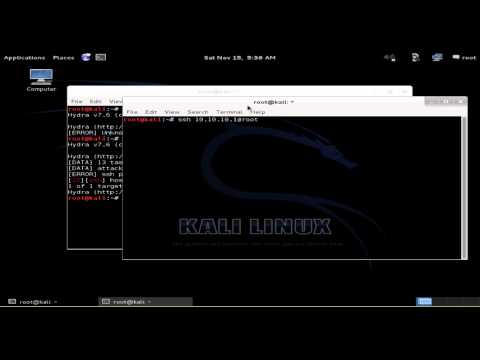 How to Hack SSH & Telnet With Hydra