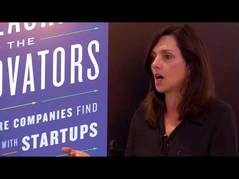 Beth Comstock and Jim Stengel: How Mature Companies can Find New Life with Startup
