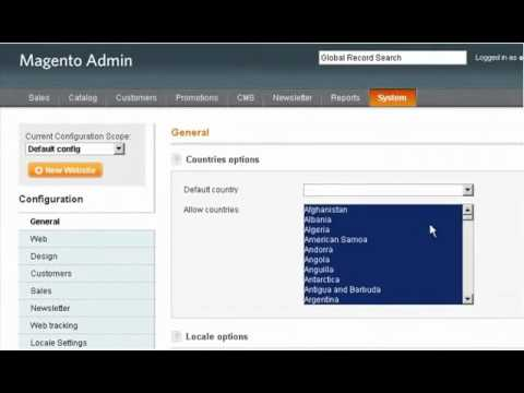 Magento - Using International Currency