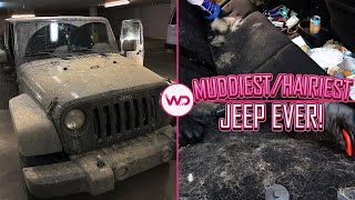 Deep Cleaning a Girl's DIRTY Jeep | Hairiest/Dirtiest Jeep EVER | Satisfying Car Detailing!