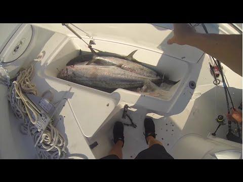 Giant Offshore King Mackerel Trolling: GoPro