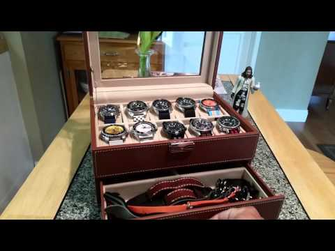 SONGMICS 10 Watch Storage /Display case