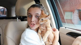 I DID SOMETHING CRAZY (i adopted a cat....)