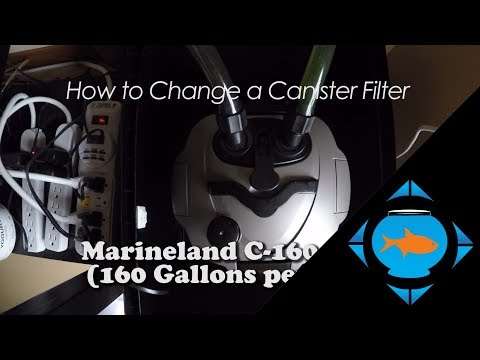 How to change a canister filter media (cleaning) - Marineland C-160 aquarium maintenance