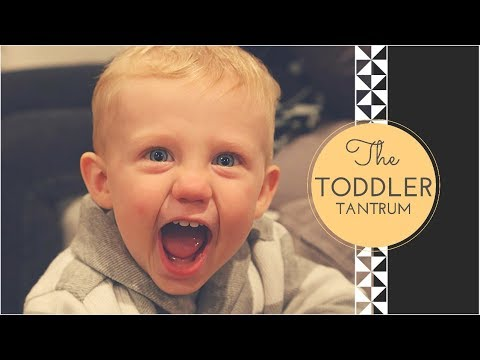 How To Avoid Toddler Tantrums / Mommy Chat
