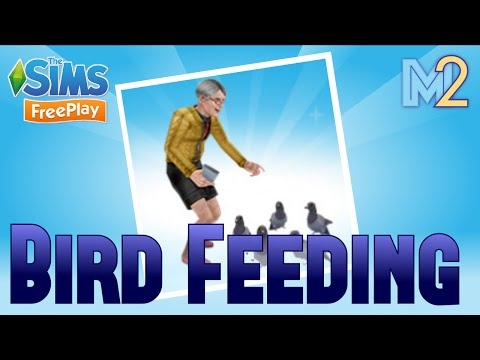 Sims FreePlay - Bird Feeding Quest & Hobby (Let's Play Ep 24)