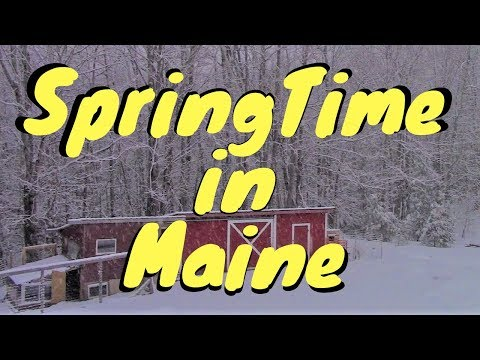 Mother Nature Canceled Spring