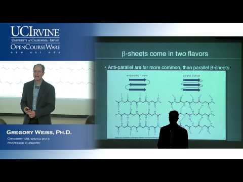 Introduction to Chemical Biology 128. Lecture 11. Proteins and Amino Acid Conformations, Part 2.