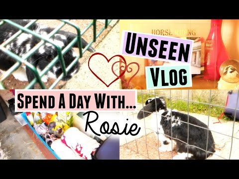 UNSEEN VLOG: Spend A Day With Rosie! | RosieBunneh