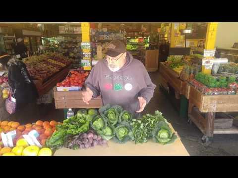 Organic Savoy Cabbage - Oya Organics