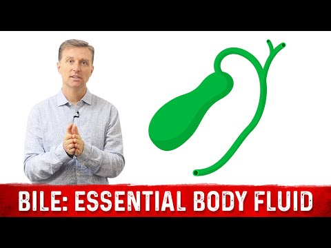 BILE: A Vitally Important Body Fluid