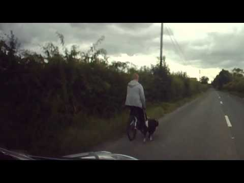 Cycling & Walking the dog on a dangerous main road - DashCam Ireland - Drogheda