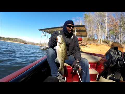 Lake Lanier Bass Tournament Prefishing With Humminbird Mega Imaging