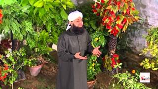 TUM PAR SALAAM HAR DAM - ALHAJJ MUHAMMAD OWAIS RAZA QADRI - OFFICIAL HD VIDEO - HI-TECH ISLAMIC