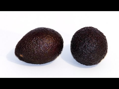 How To Keep Avocados From Browning
