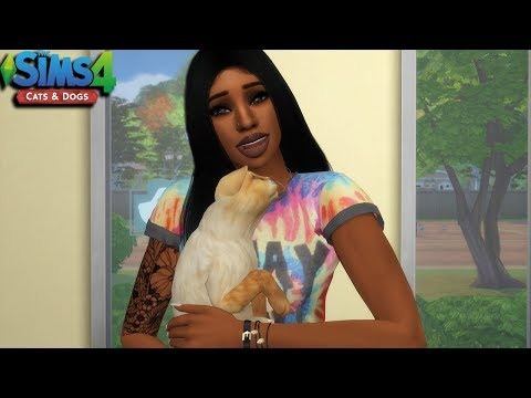 THE SIMS 4 | CATS & DOGS - EPISODE 8 | ADOPTING A STRAY CAT!