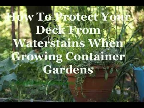 How To Protect Your Deck From Water Damage When Growing Container Gardens