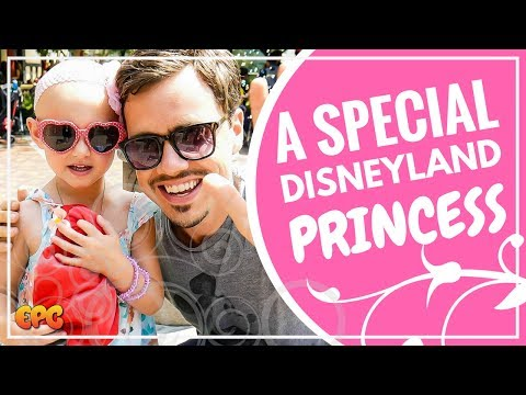 The Hayes Family Vlog | New Disneyland Princess Arrives For A Meet And Greet & I Fell In Love