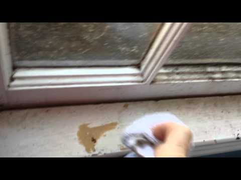 Spray Away Mold with Spray Away Cleaner & Stain Remover