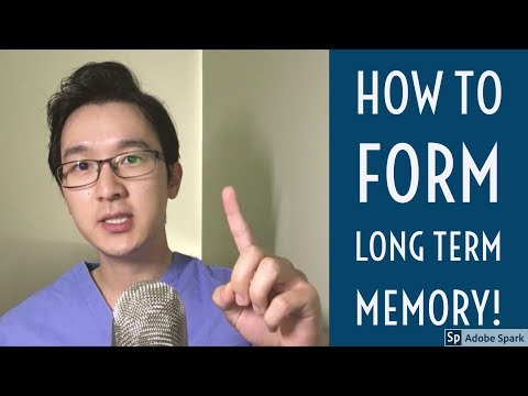 How to Memorize EVERYTHING pt 2| Form Long Term Memory | Memory Technique