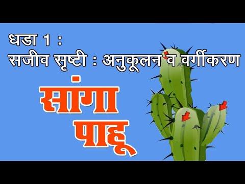 सांगा पाहु | Sanga Pahu | 7th Std | Science | Marathi Medium | Maharashtra Board | Home Revise