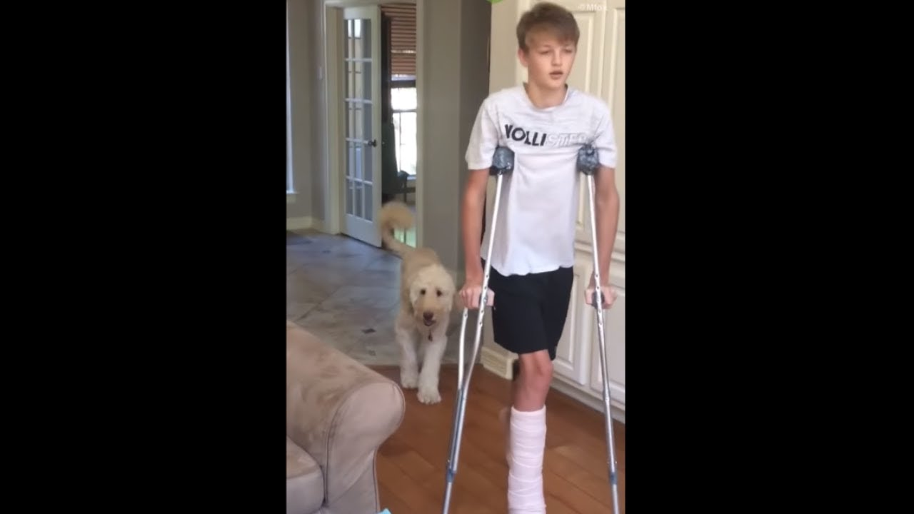 Dog perfectly imitates owner on crutches