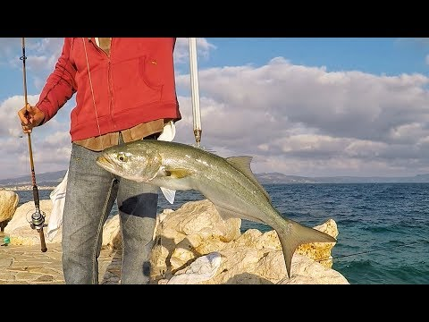 bluefish fishing,  fishing greece,  ψάρεμα Γοφάρια