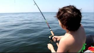 как сделать ярус для рыбалки в баренцевом море на треску