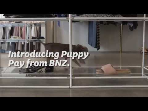 Introducing Puppy Pay - a first from BNZ