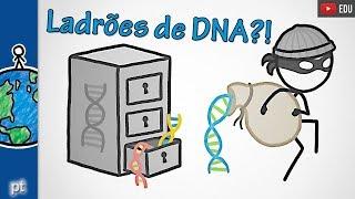 Download É seguro testar seu DNA?   Minuto da Terra Video