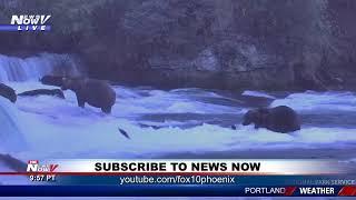 Download News Now Stream 09/18/19 (FNN) Video