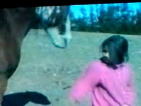 Xxx Mp4 Little Girl Tossed By Horse 3GP 3gp Sex