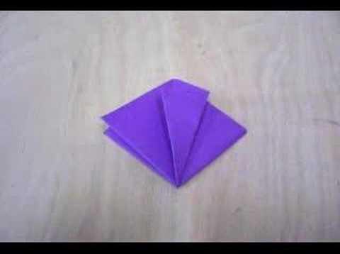 Freeze Frame Origami Folding - Tulip
