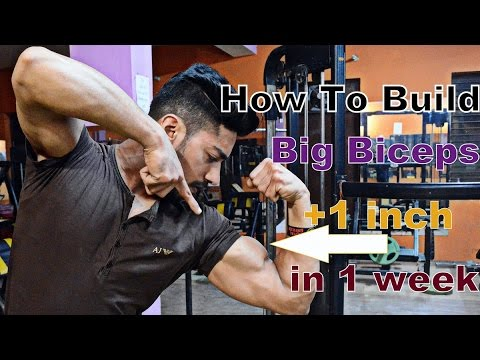 How To Increase BICEPS SIZE (3 MOST IMPORTANT TIPS)