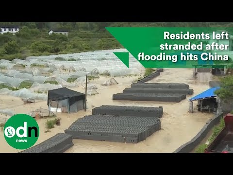 Residents left stranded after flooding hits China